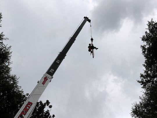 Tommy Jones, a climber with AAA Tree Experts, is hoisted up to saw apart a magnolia tree from the property around the Leon County Traffic Court building Wednesday. The company says they have been busy since Hurricane Hermine swept through Tallahassee, with projects backed up to more than a month out, depending on their safety based urgency.