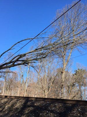 A falling tree near the Convent Station in Morris Township leaning on wires over the Morris Essex Line has suspended service in both directions between Dover and Summit. Feb. 5, 2018