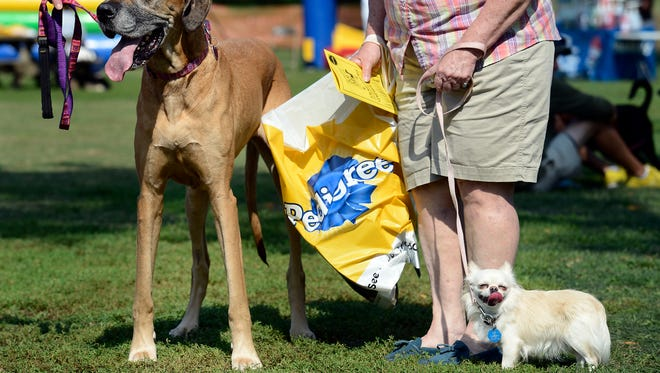 All sizes and shapes of pooches are welcome at the annual Dog Day Festival.