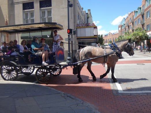 Downtown Charleston Horse Tours