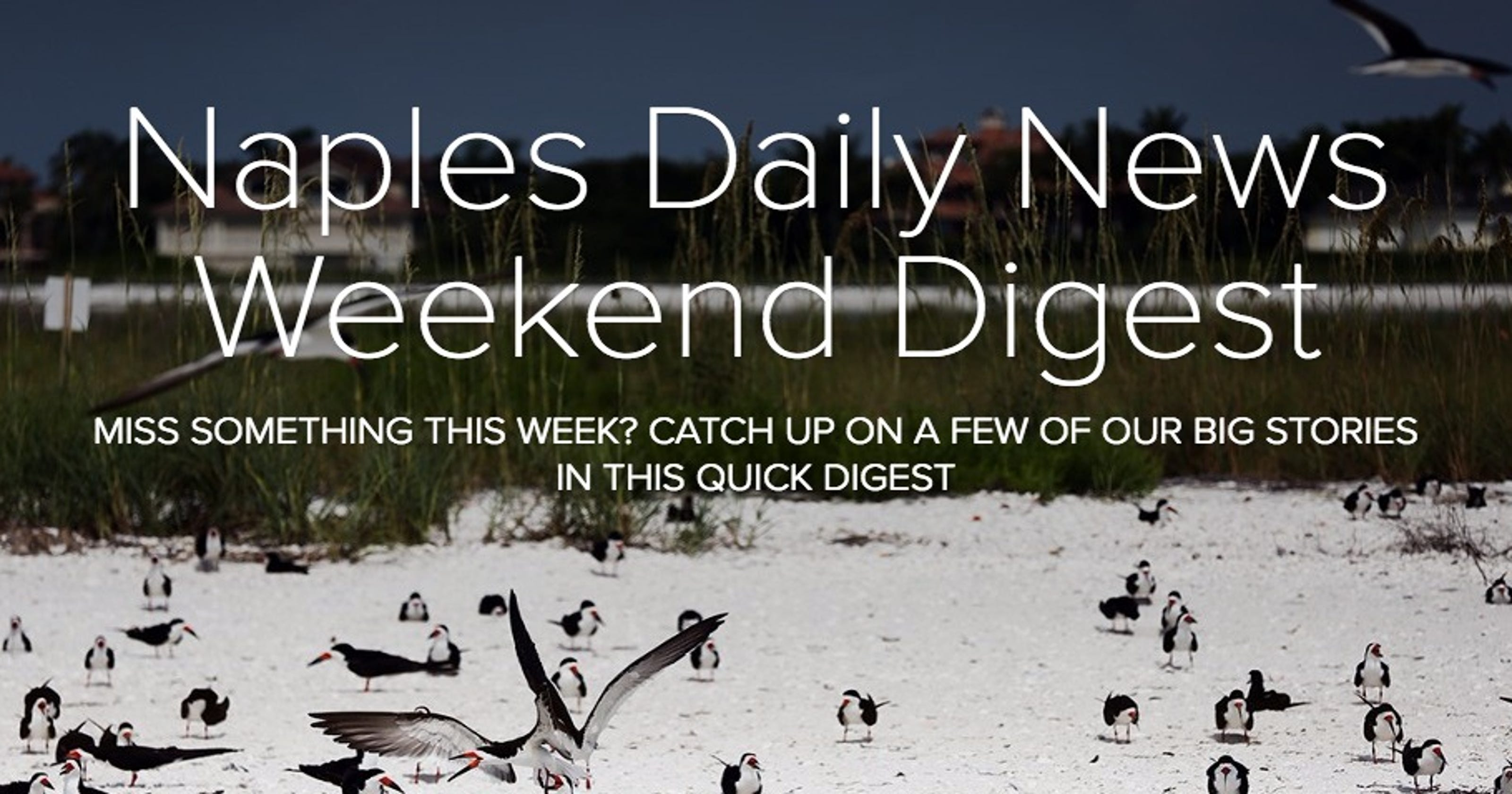 Interactive: Naples Daily News Weekend Digest June 18, 2016