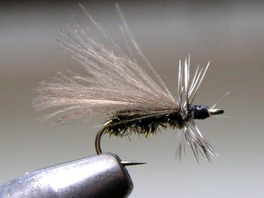 636227985870194820-CPO-MS-021917-BlackStone-Peacock.jpg