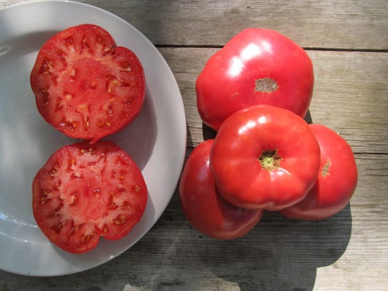 Mortgage Lifter Tomato from Hudson Valley Seed Company.