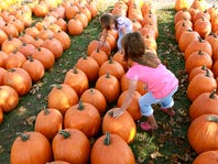 Heiser Farms Pumpkin Patch Sweepstakes