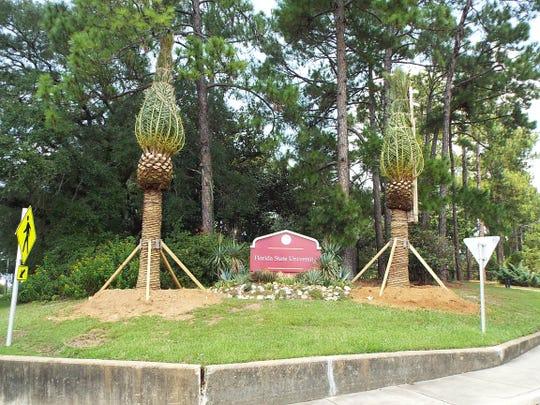 FSU palms 3
