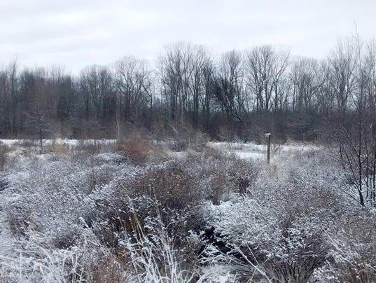 636543033789784609-frost-dunes-1-.jpg
