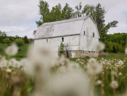 The Leelanau County Poor Farm barn is seen in Maple