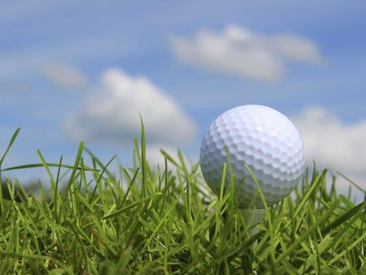 636081642619246463-golfball-tee-sky-grass.jpg