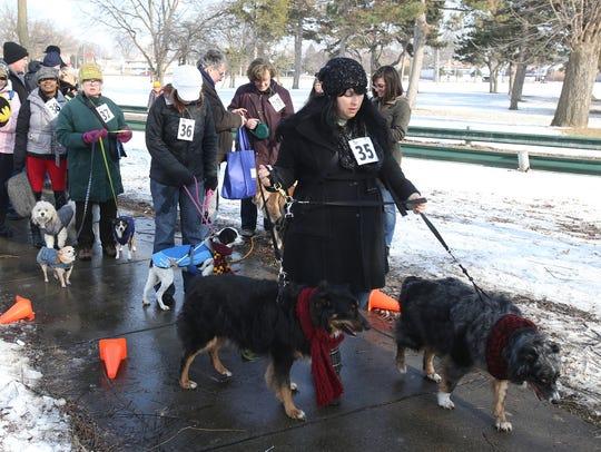 Contestants line up for the Palmer Park Doggie Walk