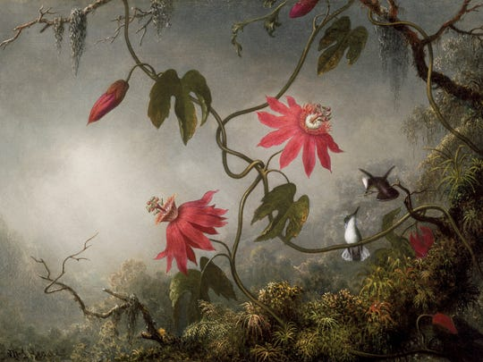 """""""Passion Flowers and Hummingbirds"""" by Martin Johnson Heade was inspired by trips to South and Latin America. Heade painted the scene between 1870 and 1873."""