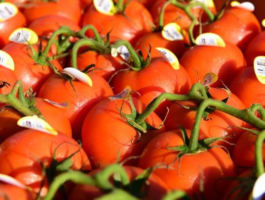 636380579254136948-Tomatoes.JPG