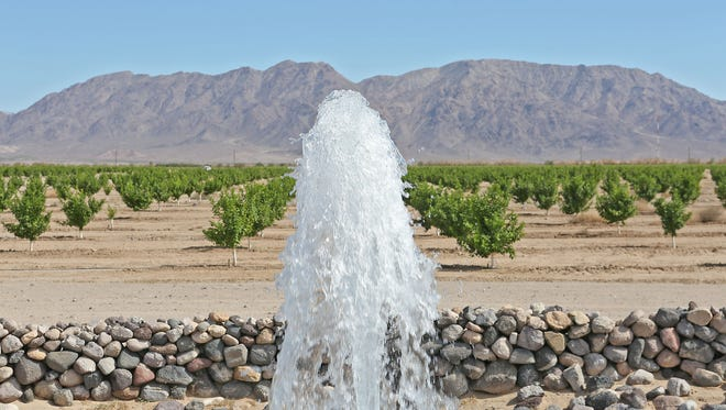 A backflush pond at Cadiz's farmland in the Mojave Desert. The company has been pumping groundwater to irrigate nearly 2,000 acres of farmland while pursuing its plan to start selling water.
