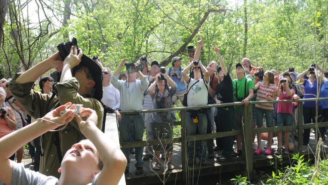 The Ohio Young Birders Club, founded in 2006, will hold its statewide conference on Nov. 4.