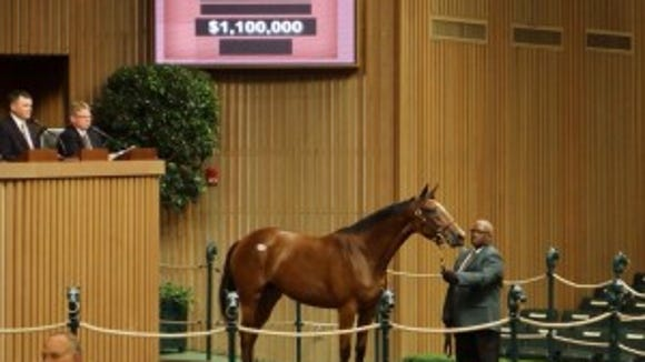Hip No. 29 was the sale's first million-dollar baby, going for $1.1 million.
