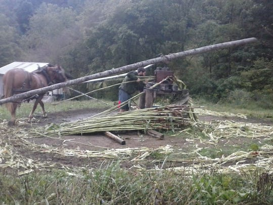 A grant award will allow Doubletree Farms to supplement the horse-powered mill that juices cane.