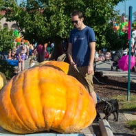 Pumpkinfest and more: Check out these three events happening this weekend