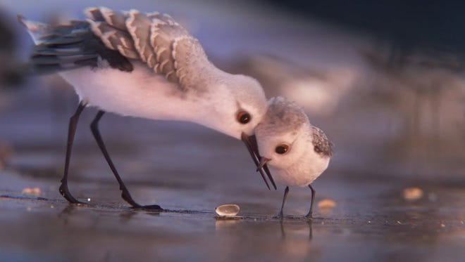 "Pixar's ""Piper,"" the story of a young bird learning to navigate the world, is the likely Oscar winner in the animated short category."