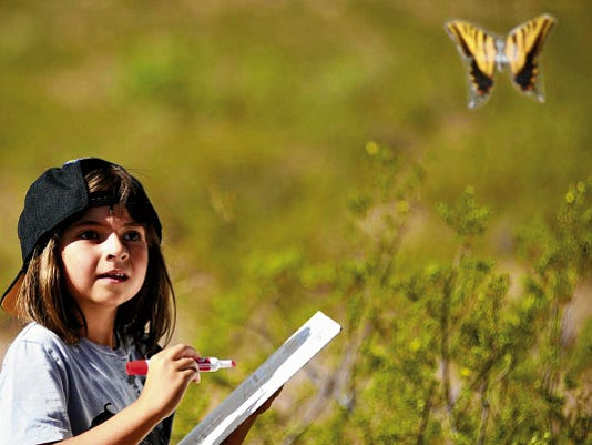 Alle Rico identifies butterflies during the 2014 Butterfly Flutterby at the Chihuahuan Desert Nature Park. The 2015 flutterby will be from 9 a.m. to noon Saturday, Aug. 15.