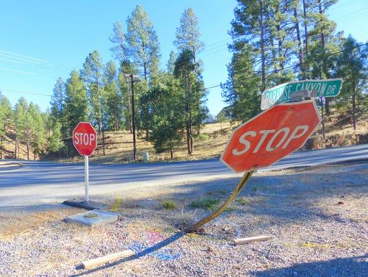 leveled stop sign on Paradise