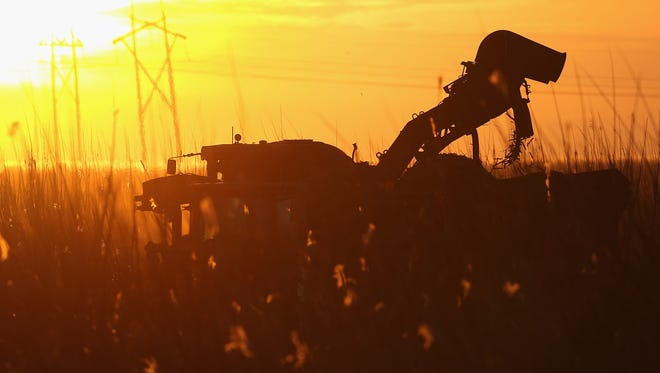A harvester works in the sugar cane fields in Clewiston, Fla., on Jan. 28.