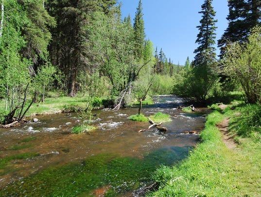 East Fork Trail near Greer