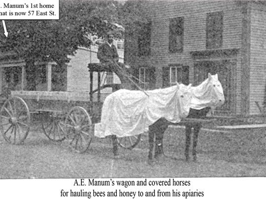 A.E. Manum with wagon and covered horses used for hauling bees.