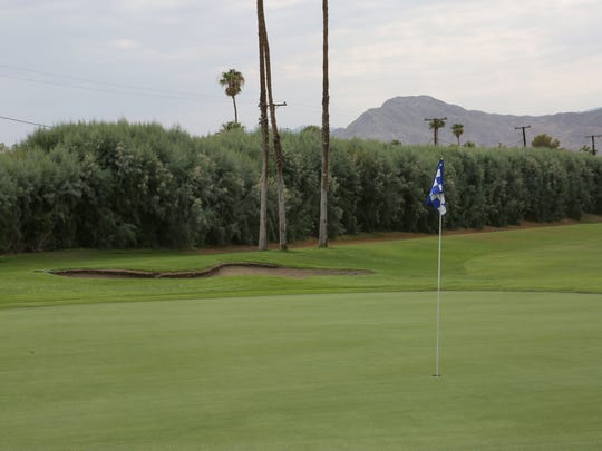 A row of tall tamarisk trees seperates the Crossley Tracts neighborhood from the city-owned Tahquitz Creek Golf Course.