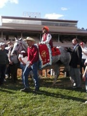 All-American Futurity winner Imperial Eagle wears the