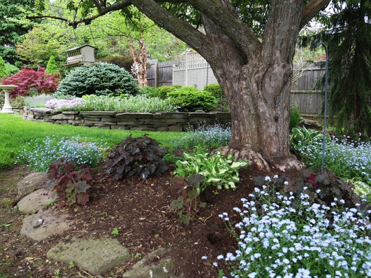 """A Peaceful Garden,"" one of the stops along PAST's garden tour, includes Kousa dogwoods, Japanese maples, lilacs, lavender, roses, hydrangea, lilies, purple phlox and grasses."