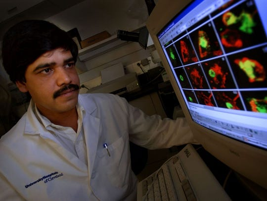 Research associate Ravi Mishra studies slides of brain