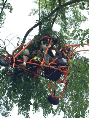Two men await rescue after their ultralight plane malfunctioned and lodged into tree branches about 30 feet above the ground.