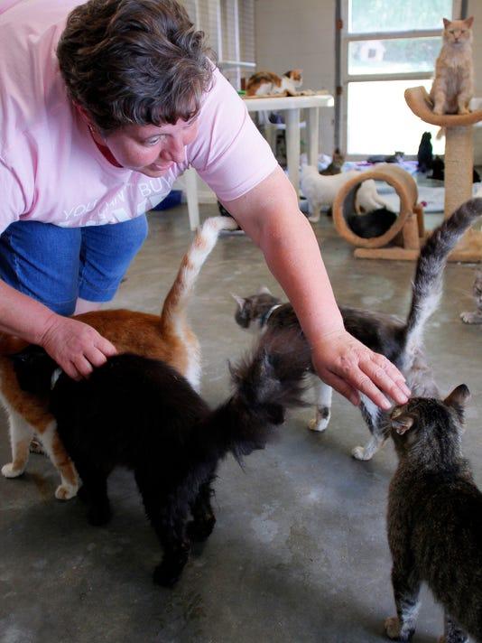 10-COS-071416-animal-shelter-volunteers-ML.JPG