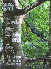 "Barbara Beisinghoff's ""Tree poetry (Wörtersee),"" second International Forest Art Path ""Expeditions"" in Darmstadt, 2004; beech cellulose on beech tree one month after the installation."