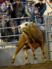 """You're more worried about face planting the bull or hitting or head on him and just trying to stay in the middle,"" said Christian Kennard, then-17, seen here as he tries to hold on while competing in the bull riding portion of the rodeo held at the Pa. Farm Show in Harrisburg on Jan. 6, 2018. Christian's love and talent for bull riding has taken him to competitions all over the country. This year's farm show runs Jan. 5-12."