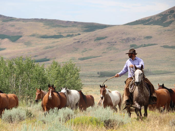 The Cottonwood Guest Ranch is a working cattle ranch