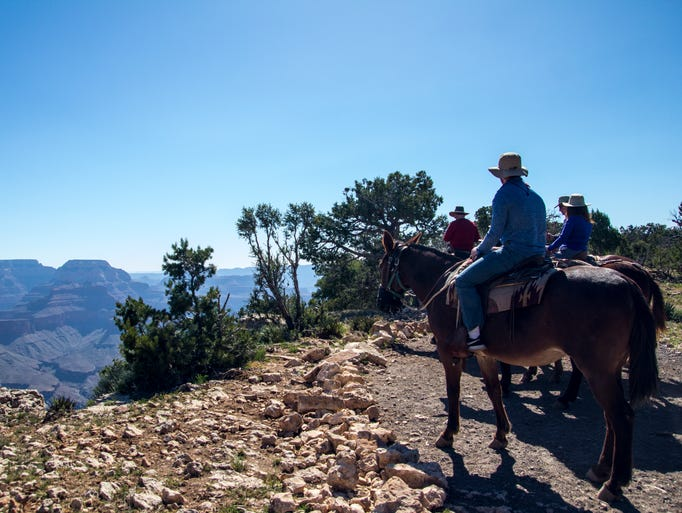 The view from the south rim of the Grand Canyon during