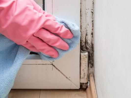 636543674120857589-comp-mold-scrubbing-mold.jpg