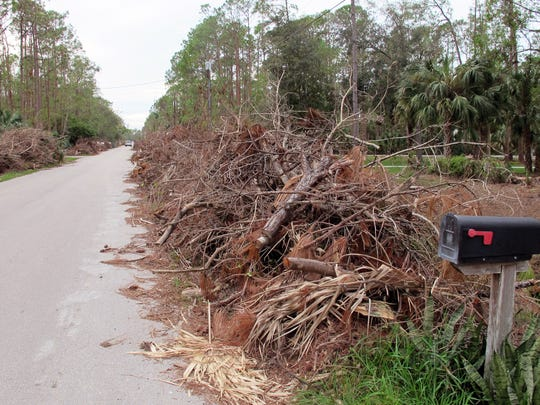 Large piles of trees and brush downed by Hurricane Irma front homes in October 2017 along English Oaks Lane off Oakes Boulevard in North Naples.
