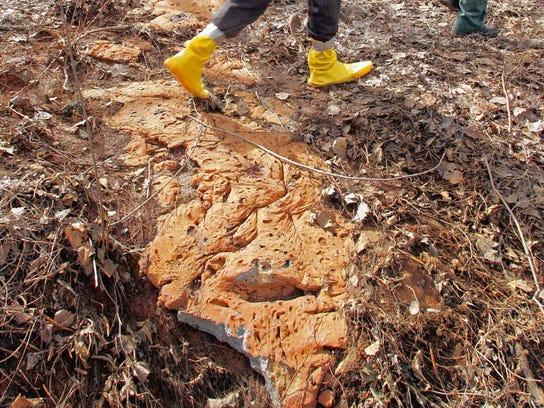 Toxic paint sludge in Ringwood.