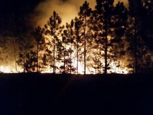 wildfire navarre