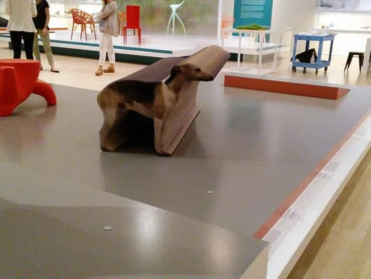 "A ""Whippet Bench"" tricks guests's eyes at the Newfields"