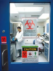 Employees work in one of the BSL-3 laboratories at