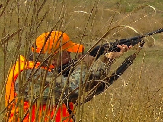 Pennsylvania's role in pheasant hunting is changing.