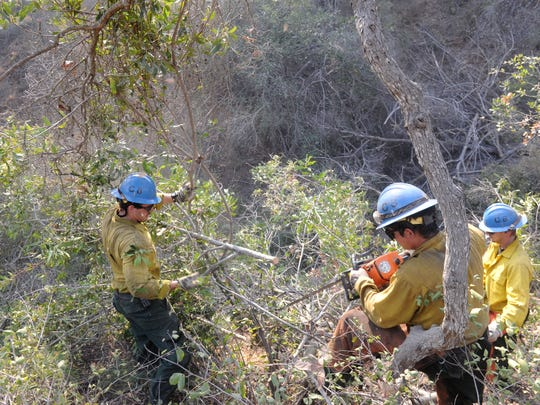 A hand crew works to clear brush along the area of Highway 150 near Lake Casitas on Saturday as the Thomas Fire burned toward homes.