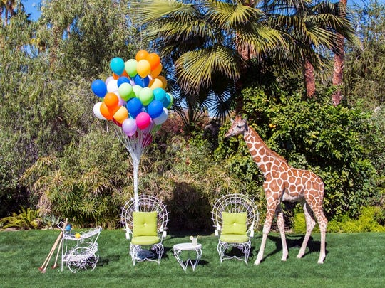 Photographer Gray Malin brought zoo animals onto the Parker Palm Springs grounds for a photo series called Gray Malin at the Parker.