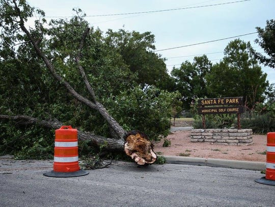 Toppled trees are spread throughout Santa Fe Park after