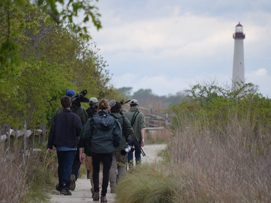 Dr. Dave LaPuma Ph.D., director of Cape May Bird Observatory for New Jersey Audubon, and his team, along with a television crew team from PBS.