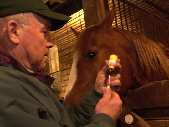 Veterinarian Wes Schroeder fills his syringe as he prepares to vaccinate a horse for the West Nile virus in this file photo.