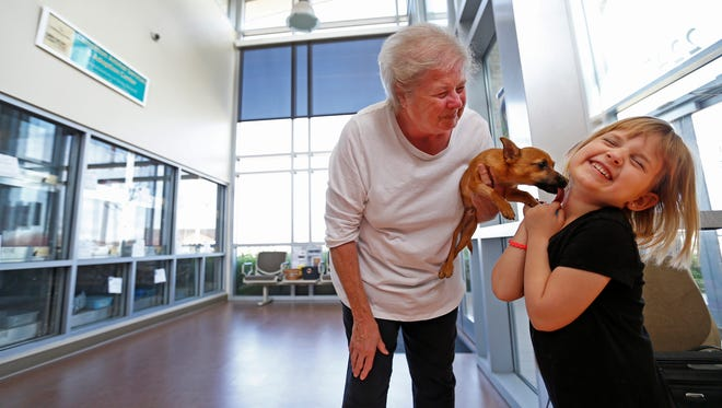 Lacey Diaz, right, 5, gets a lick from rescued dog Lucky, a 4-month-old Chihuahua mix, next to her grandmother Diana Lepsch on Wednesday, March 8, 2017 at the Carrollton Animal Adoption Center in Carrollton, Texas. (Jae S. Lee/Dallas Morning News/TNS)NO MAGAZINE SALES MANDATORY CREDIT; NO SALES; INTERNET USE BY TNS CONTRIBUTORS ONLY