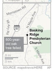 A white oak tree has watched over a New Jersey community and a church for hundreds of years.